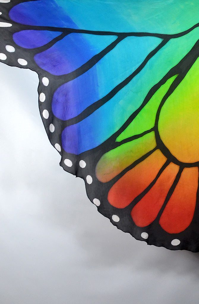 Butterfly Wings - Rainbow