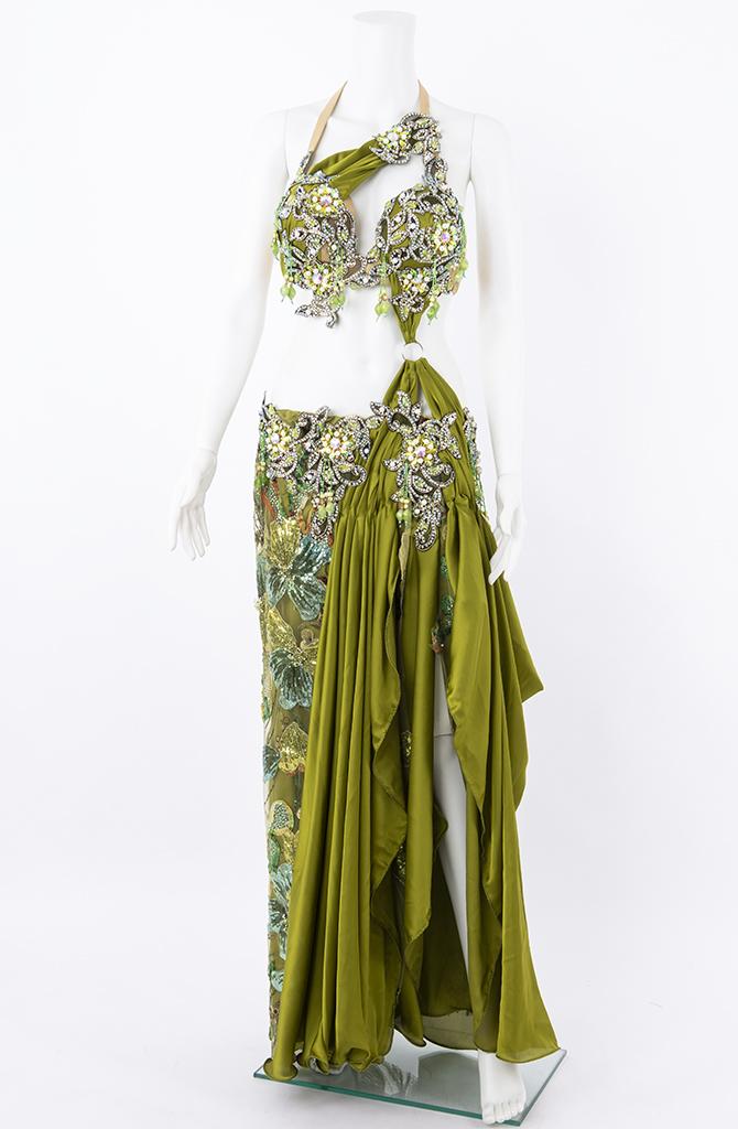 Belly Dance Costume - Floral Fern
